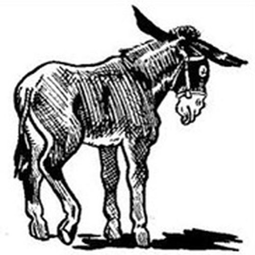 To the declining donkey